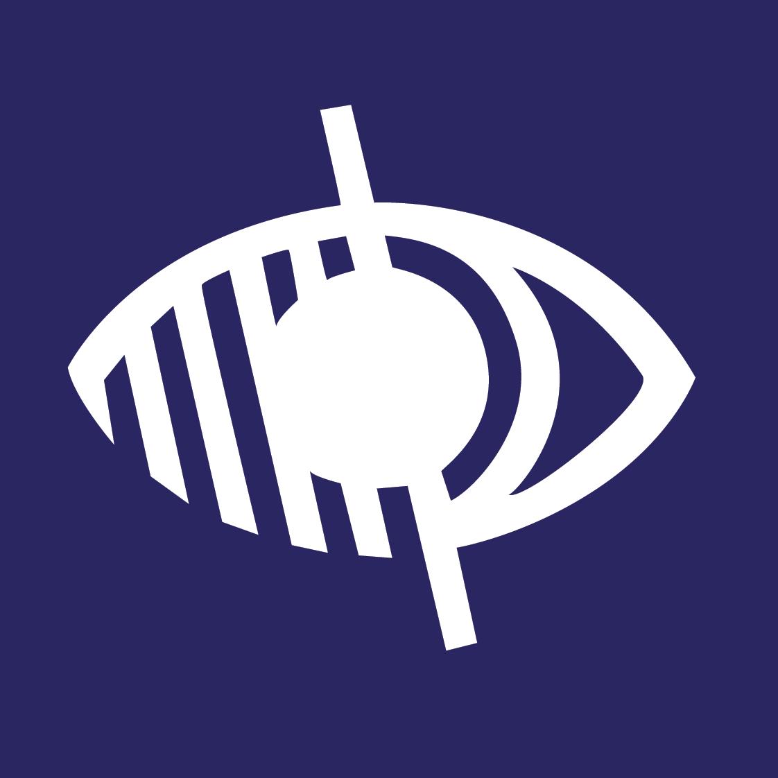 Action sensibilisation au handicap visuel du CME