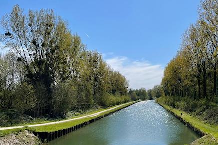 Grande marche de la Marne